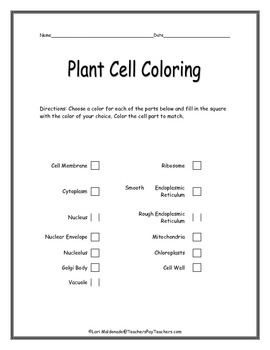 Cells: Plant Cell Diagram to Color