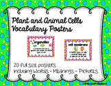 Cells: Plant and Animal Vocabulary Posters