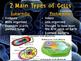 Cells PowerPoint (Eukaryotic vs. Prokaryotic)