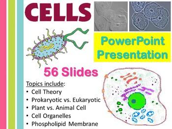 Cells PowerPoint Presentation (.ppt)