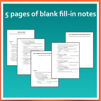 Cells Powerpoint and Fill-In Notes