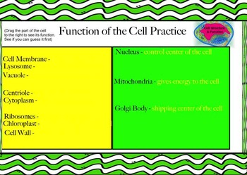 Cells Presentation and Activities for SmartBoard