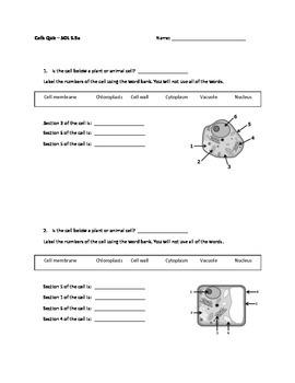 Cells Quiz SOL 5.5a