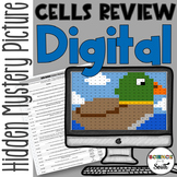 Cells Review Digital Hidden Mystery Picture   Distance Learning