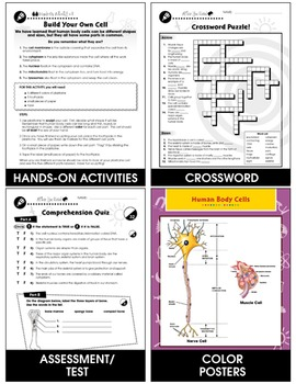 Cells, Skeletal & Muscular Systems: Cells - The Building Blocks of Life Gr. 5-8
