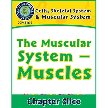 Cells, Skeletal & Muscular Systems: The Muscular System -