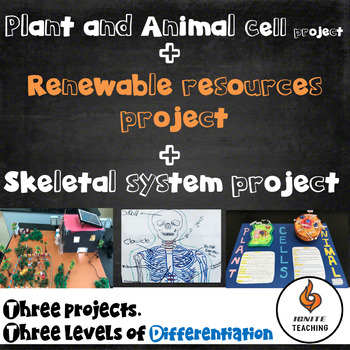 Cells, Skeletal and Renewable projects bundle
