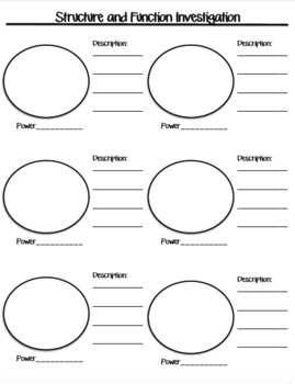 Cells Structure and Function and Protist Lab Worksheets
