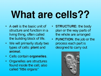 Cells Structure and Function powerpoint & keynote presentation lesson plan