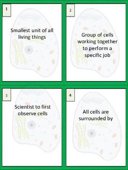 Cells Study Buddy Vocabulary Cards