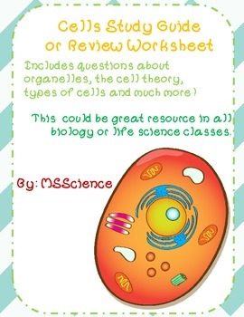 Cells Study Guide