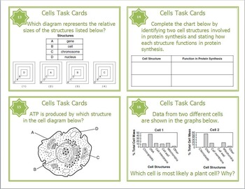 cells and cell organelles task cards for middle and high school tpt. Black Bedroom Furniture Sets. Home Design Ideas
