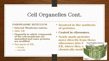 Cells, Tissue and Integument System