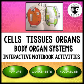 cells tissues organs interactive notebook activities by acorn tpt. Black Bedroom Furniture Sets. Home Design Ideas
