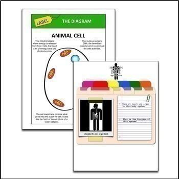 Cells, Tissues, Organs Google Drive Interactive Notebook