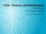 Cells, Tissues, and Membranes PowerPoint