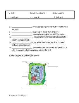 Cells Unit - ASSESSMENT - 5th Grade Science