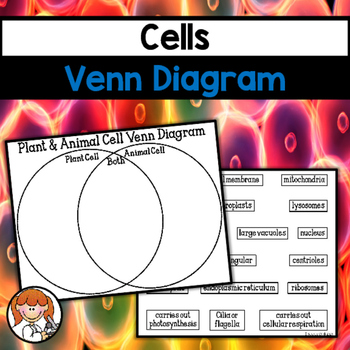 Cells Venn Diagram