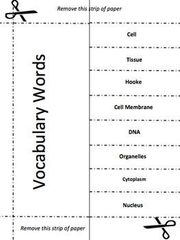 Cells Vocabulary Activity