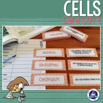 Cells Vocabulary Card Sort