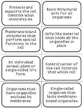 Cells Vocabulary Cards