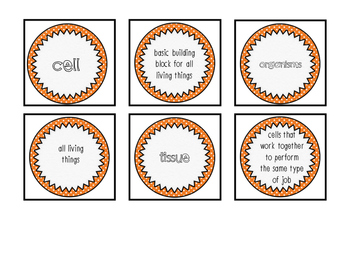 Cells Interactive Notebook-Cells Vocabulary Cards