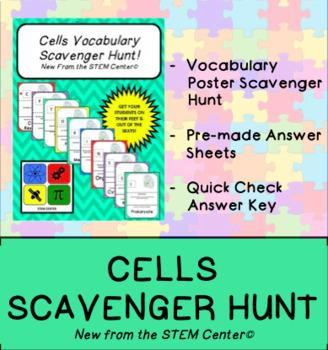 Cells Vocabulary Scavenger Hunt Game