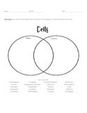 Cells Vocabulary Unit Plan