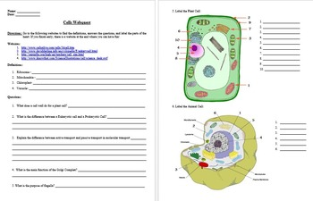Cells Webquest