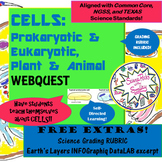 CELLS-Prokaryotic & Eukaryotic-Animal & Plant- Amazing WEBQUEST!