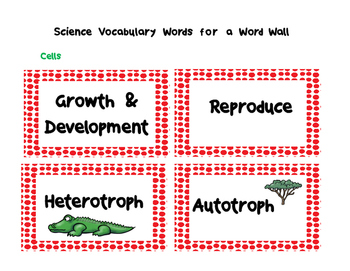 Cells Word Wall Cards