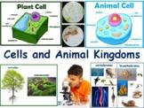 Cells & Animal Kingdoms Lesson - classroom unit, study guide, state exam prep