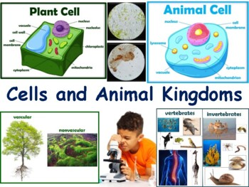Cells & Animal Kingdoms Lesson - classroom unit, study guide, state exam prep