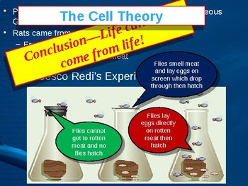 Cells and Cell Function PowerPoint