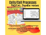 DIGITAL OR PRINTABLE Cells and Cell Processes Doodle Notes