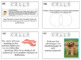 Cells and Cell Transport Task Cards