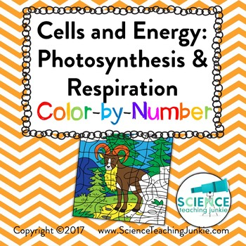 Cells and Energy: Photosynthesis and Respiration Color-by-Number