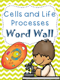 Cells and Life Processes Word Wall