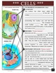 Cells and Living Things: An engaging guided note packet