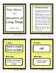 Plant Life - Vocabulary & Review with Class Activity Games