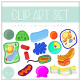 Biology Clip Art - Cells and Organelles