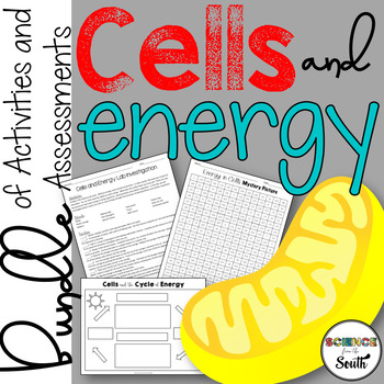 Cells and Energy Bundle Review Photosynthesis and Cellular