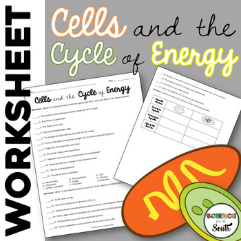 Cells and Energy Worksheet Review Photosynthesis and Cellular Respiration