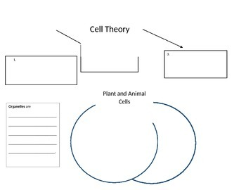 Cells graphic organizer