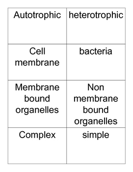 Cells sorting activity