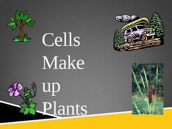 Cells- the basic unit of life