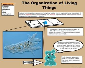 Cells to Organisms -  A Fifth Grade PowerPoint Introduction
