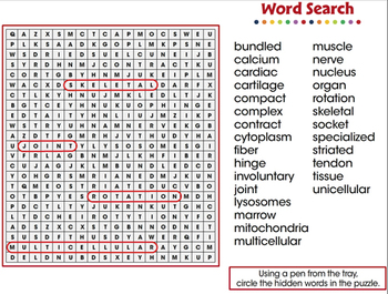 Cells,Skeletal & Muscular Systems: Word Search - MAC Gr. 3-8