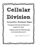 Cellular Division Interactive Notebook