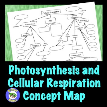 Photosynthesis & Cellular Respiration Concept Map
